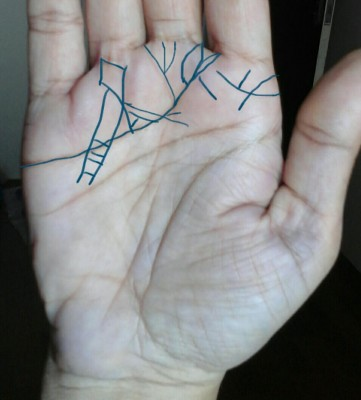 dominant hand other lines on mounts and heart line.jpg